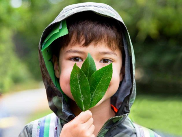 Young boy holds leaves in front of face
