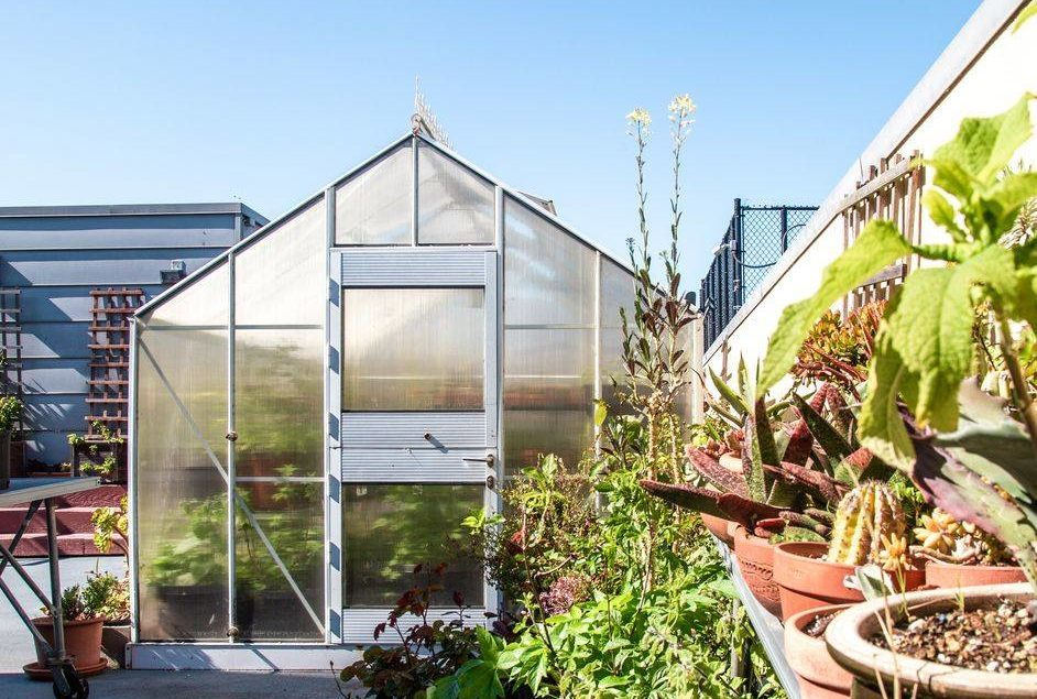 Photo of a greenhouse and plants
